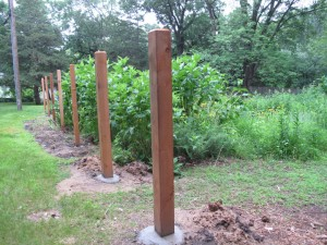 Fence posts set back from the easement along the back edge of the garden.